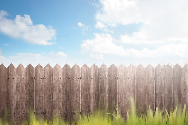 Wooden fence on green garden