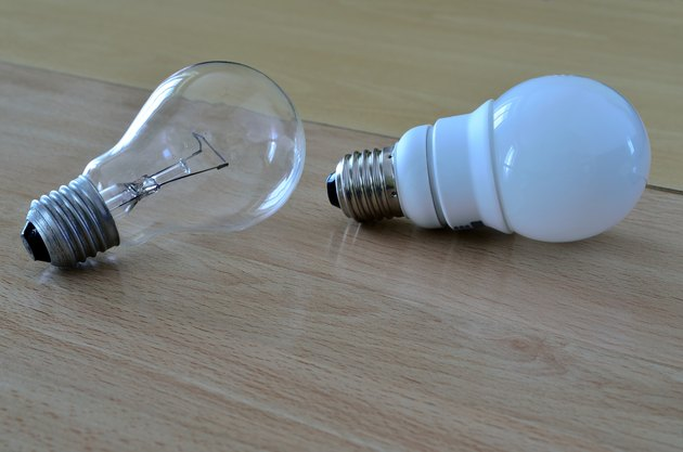 incandescent light bulb and compact fluorescent lamp