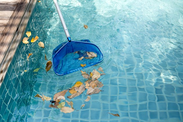 Cleaning swimming pool of fallen leaves with blue skimmer