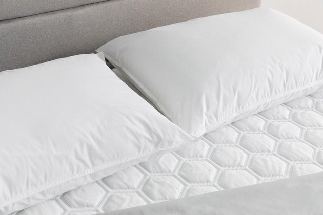 Molecule Martex Purity Stay Fresh Pillow