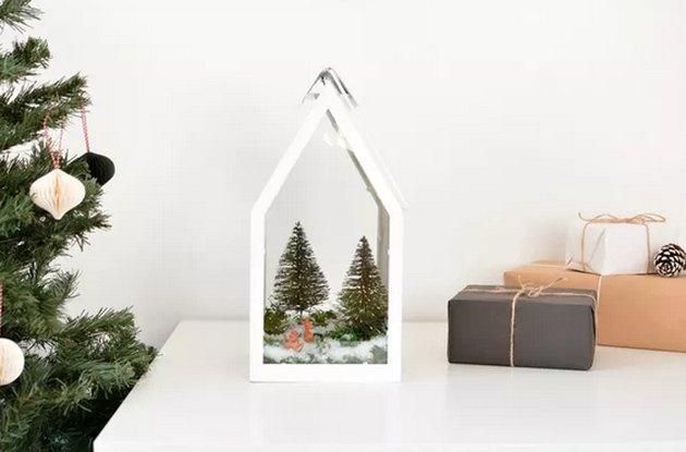 Winter Holiday Terrarium