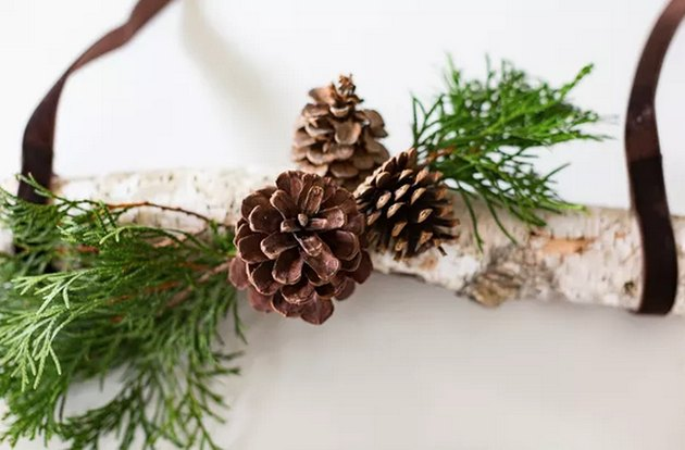 Earthy Branch and Pine Cone Hanging