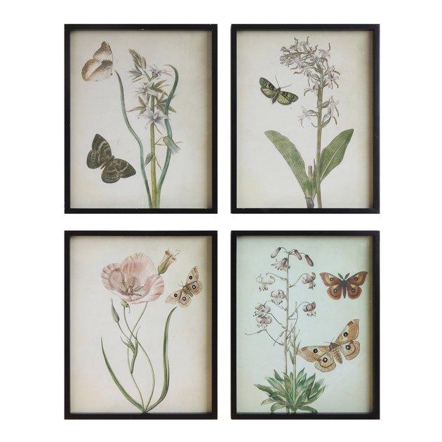 vintage-style floral drawings
