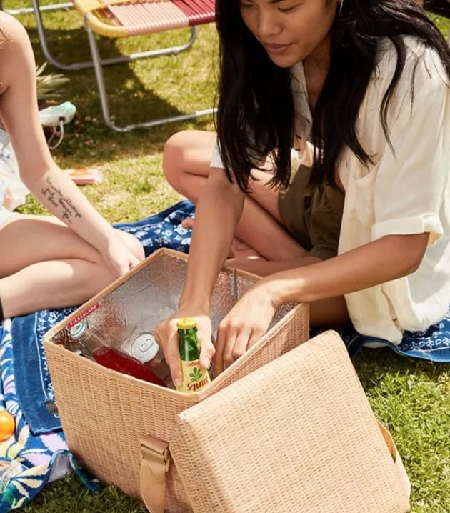 picnic gear