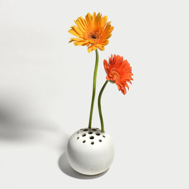 White vase with multiple holes with two daisies