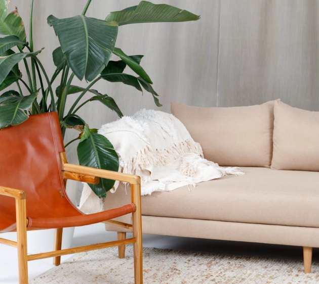 eco-friendly furniture with cream sofa with orange leather chair and houseplant