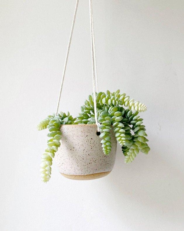 Made Trade Hanging Planter