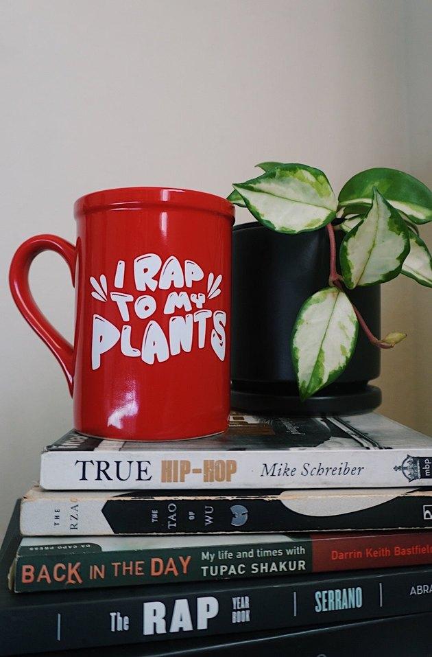 I Rap To My Plants Mug on a stack of books