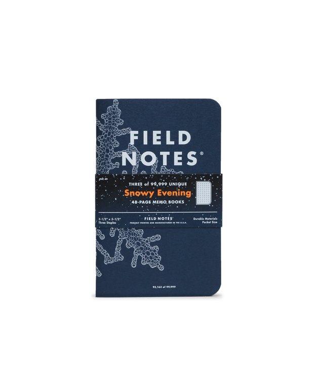 Field Notes Snowy Evening