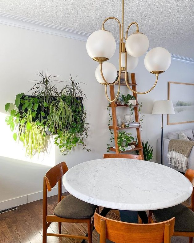 dining area with wall covered in live plants and shelf unit with live plants