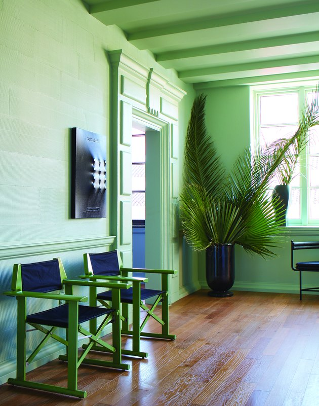 room with chairs and plant with green walls