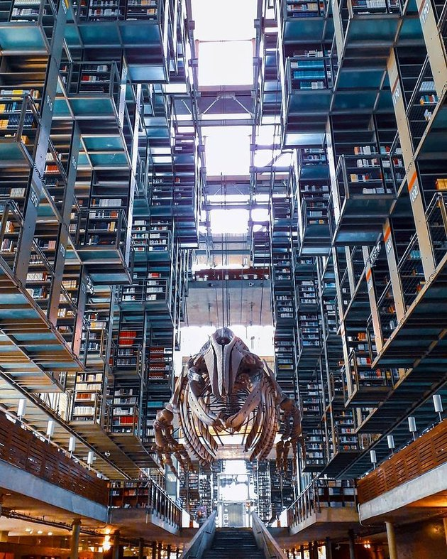 picture of bookshelves at the biblioteca vasconcelos in mexico city