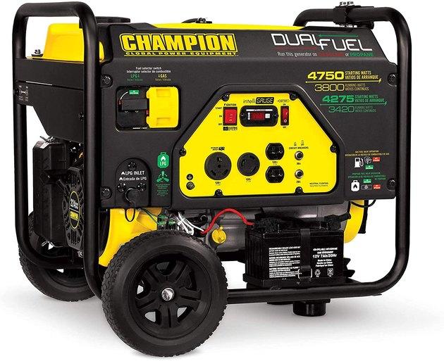 Champion Power Equipment Portable Generator