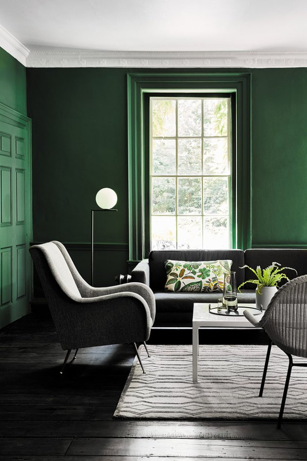 color meaning in green paneled living room with modern furniture