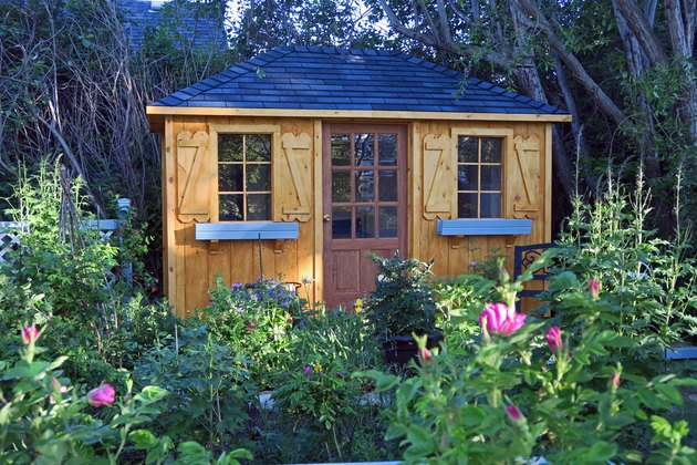 Quaint garden shed in a flower garden with roses