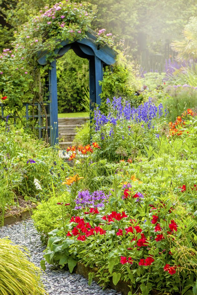 Beautiful English cottage, summer garden with blue wooden archway, in soft sunshine