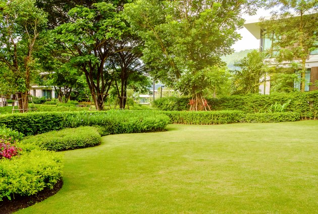 House in the park, Green lawn, front yard is beautifully designed garden