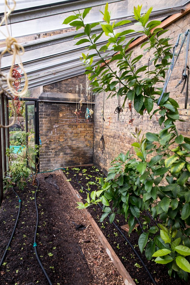Greenhouse Lean-to