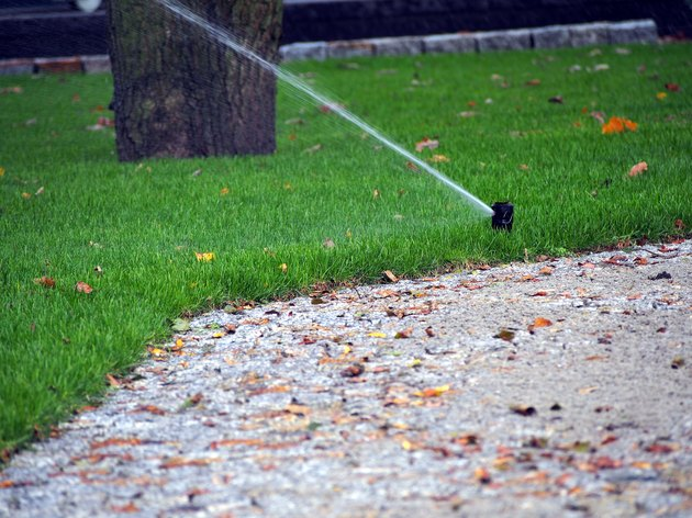 Automatic irrigation system, working sprinkler.