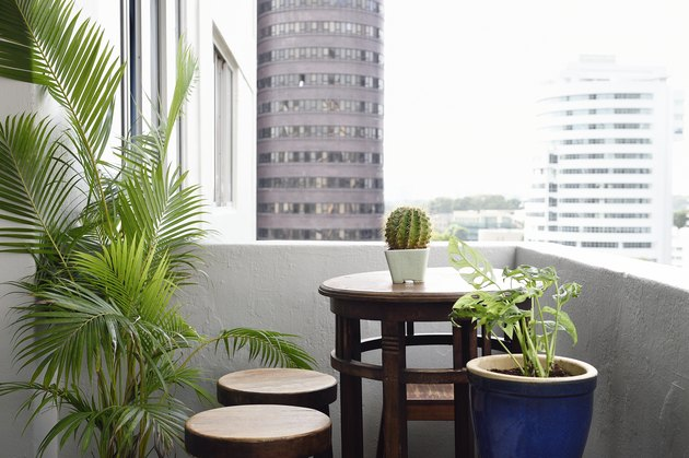 Apartment balcony table with plants