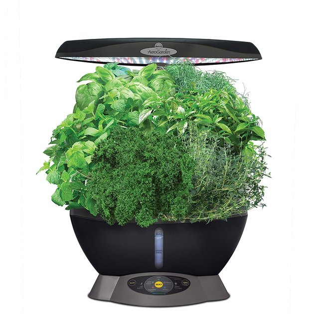 Garden year-round. Grow fresh herbs, vegetables, salad greens, flowers and more in this smart countertop garden