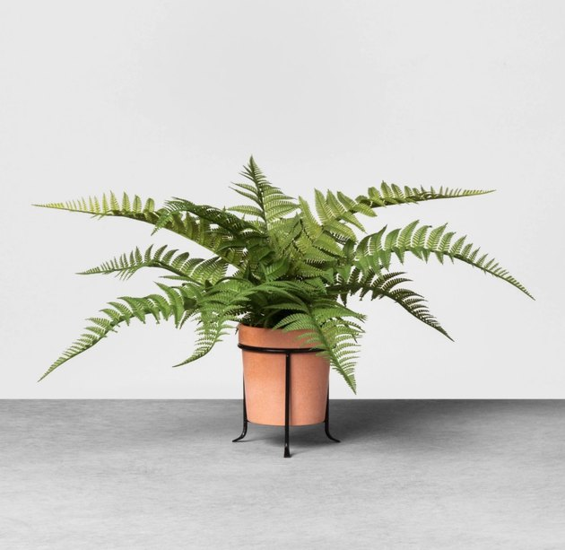 Add a splash of greenery to your indoor space with this pretty Faux-Fern Potted Plant from Hearth & Hand™ with Magnolia. Crafted from sturdy, weather-resistant materials, this lush faux fern comes housed in an attractive terra-cotta planter that contrasts beautifully with the bright green leaves of the potted plant. Sitting atop a cylindrical metal holder with a black finish, this faux-potted plant gives a fine, realistic touch to any room. Lightweight and compact, this faux-plant displays well on any tabletop, shelving unit or console for a bright pop.
