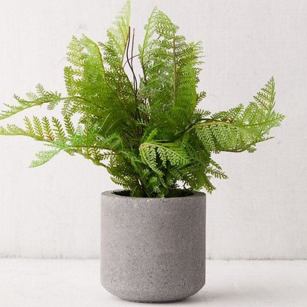 Faux fern housed in a cement planter for industrial-boho vibes. The best part? It looks great year 'round, no upkeep necessary.