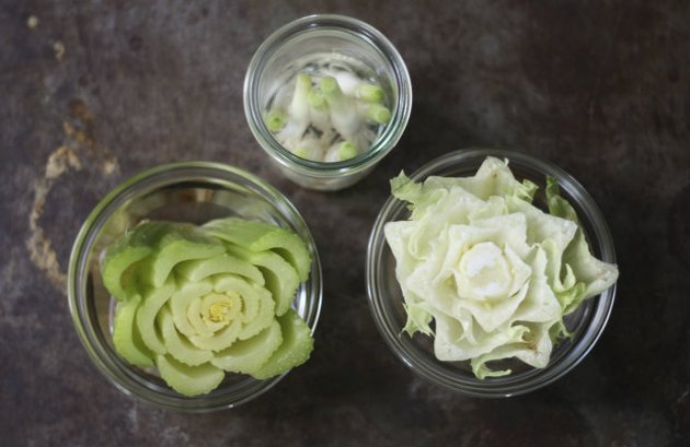 How to regrow kitchen scraps