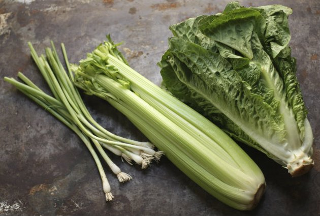 Onions Celery and Romaine Lettuce