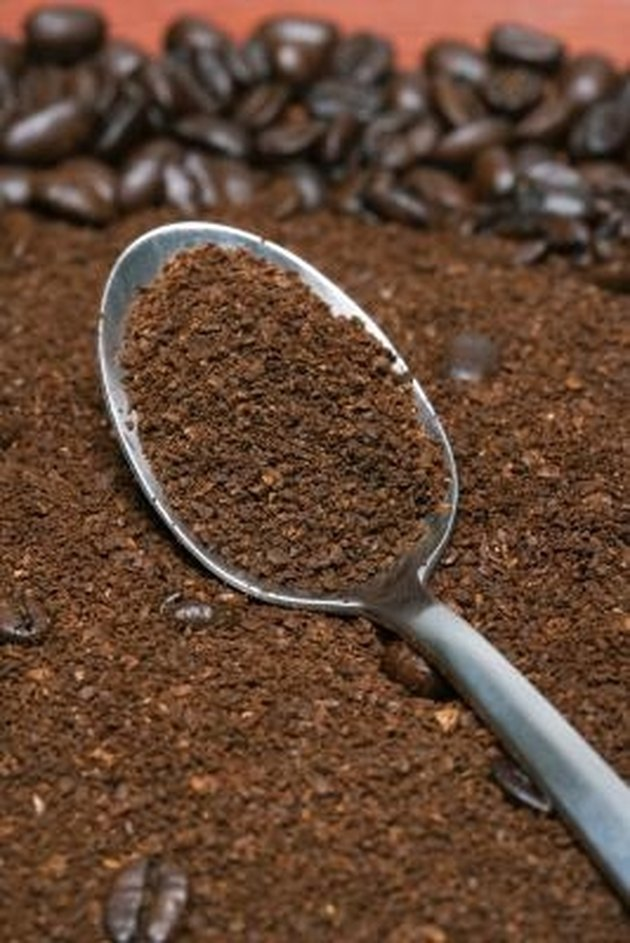 How to Grow Mushrooms in Coffee Grounds