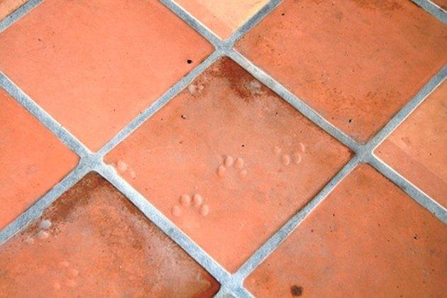 Footprints in Tile