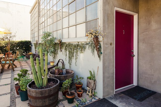 Idée de rangement et d'organisation en extérieur avec une porte marron avec diverses plantes et cactus à l'extérieur