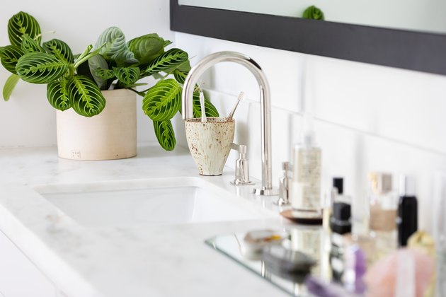 White vanity countertop with potted plant and sink