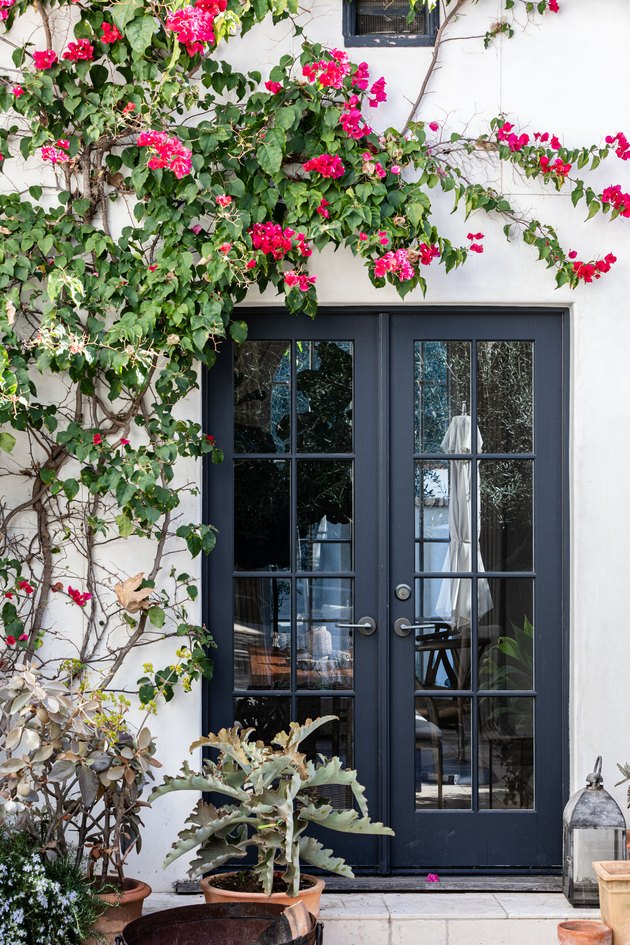 Black French doors with a pink flower tree and potted plants