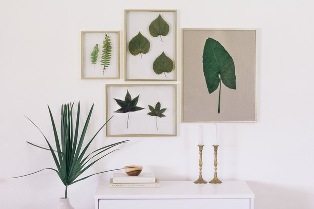a gallery wall made of float frames containing preserved green leaves