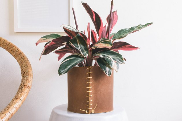 Brown leather vase sewn with leather cord with plant on porcelain stool