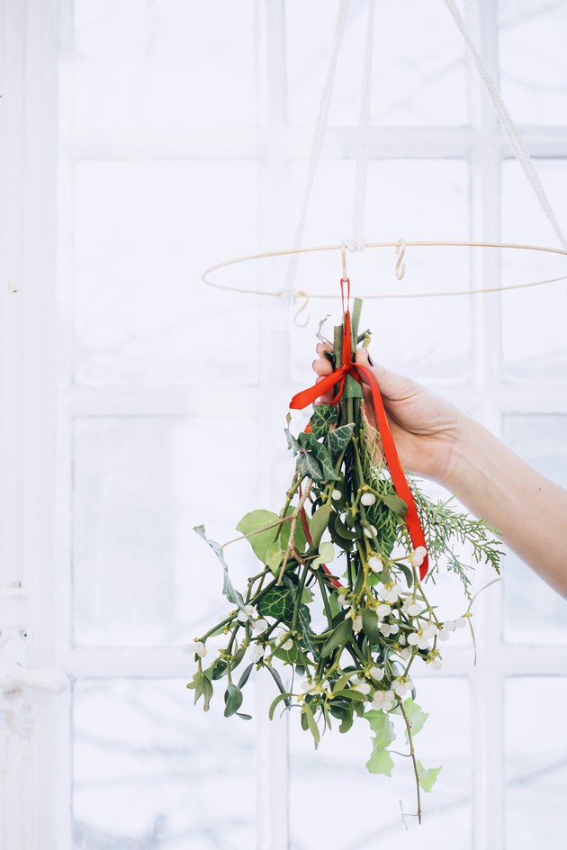 a bunch of mistletoe is hung from a rack to dry