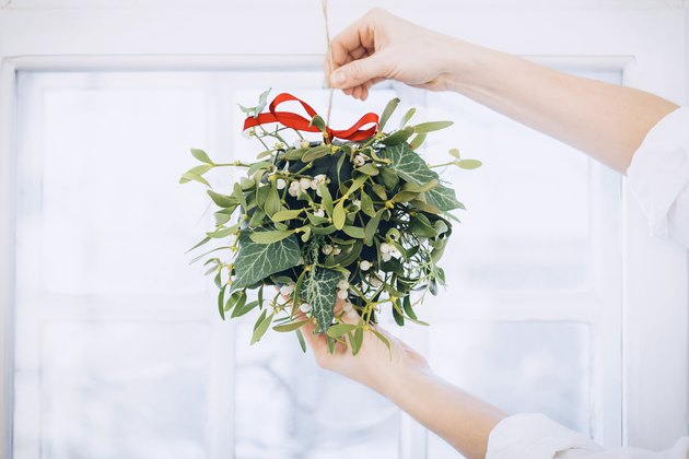 mistletoe and other greenery arranged in a spherical form around a foam floral ball