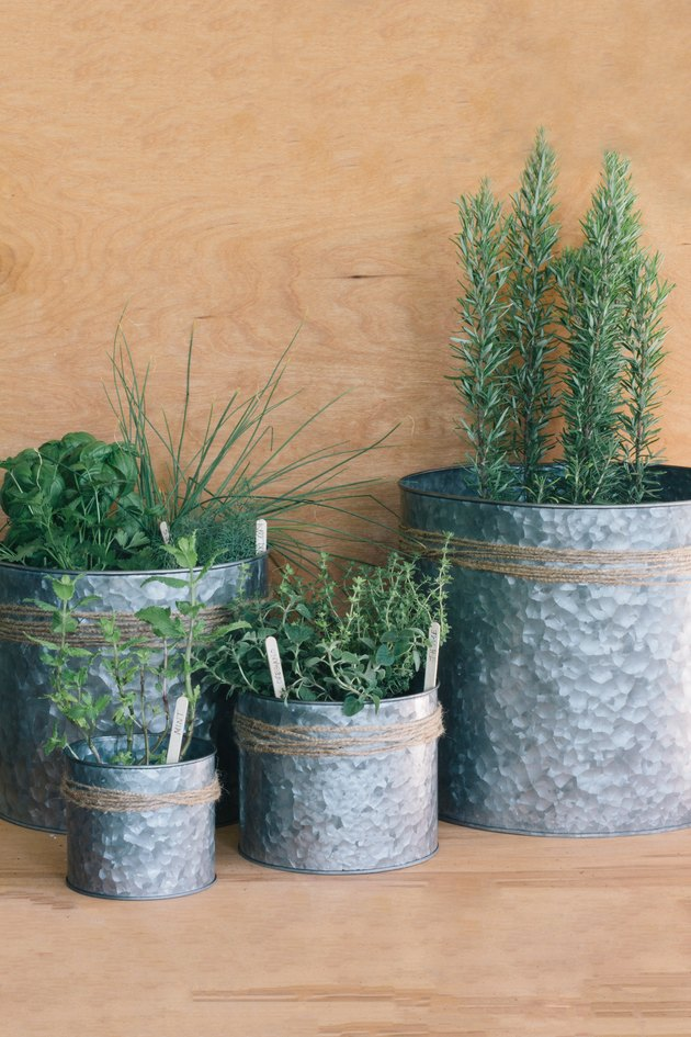 Metal planters with decorative jute twine and plants