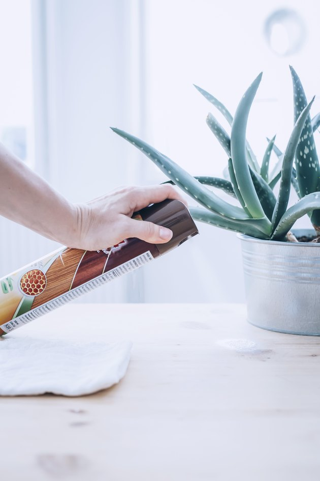 a woman sprays furniture polish on a table with an aloe plant on it