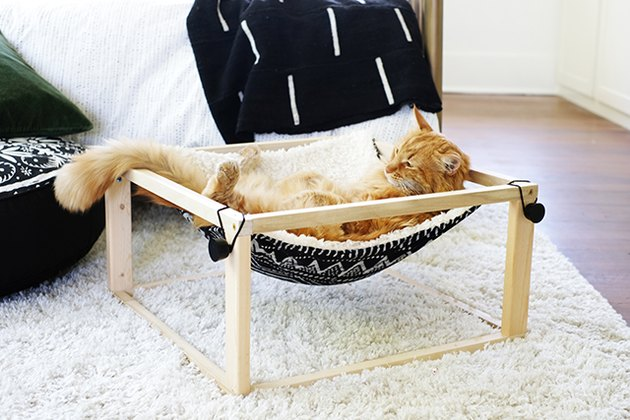 Orange cat in kitty hammock with pillow and wood frame on white rug