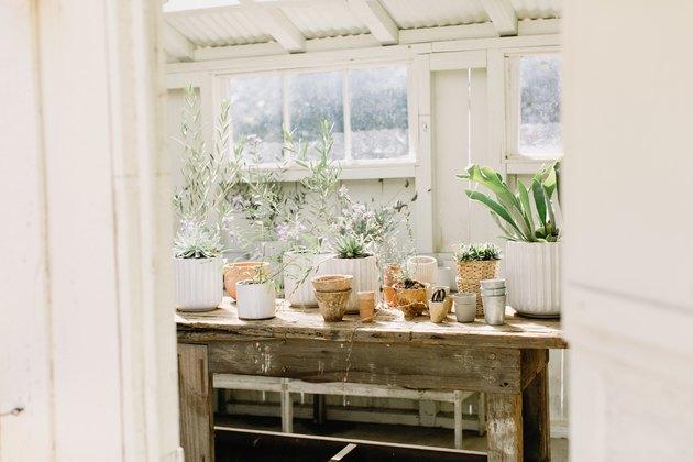 Idée de rangement et d'organisation en plein air avec abri avec table de travail et pots avec plantes