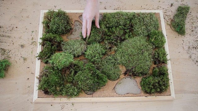 placing clumps of moss in spaces cut out of cork tile inside a bulletin board frame