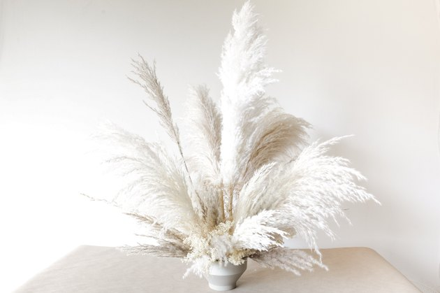 an arrangement of tall, wispy pampas grass in a white vase