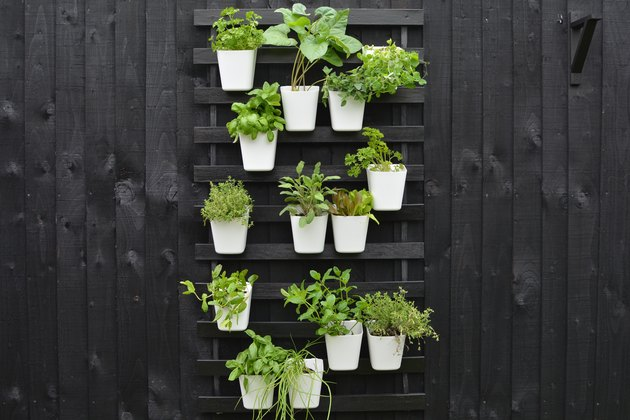 Black vertical garden against black fence with green plants in white containers