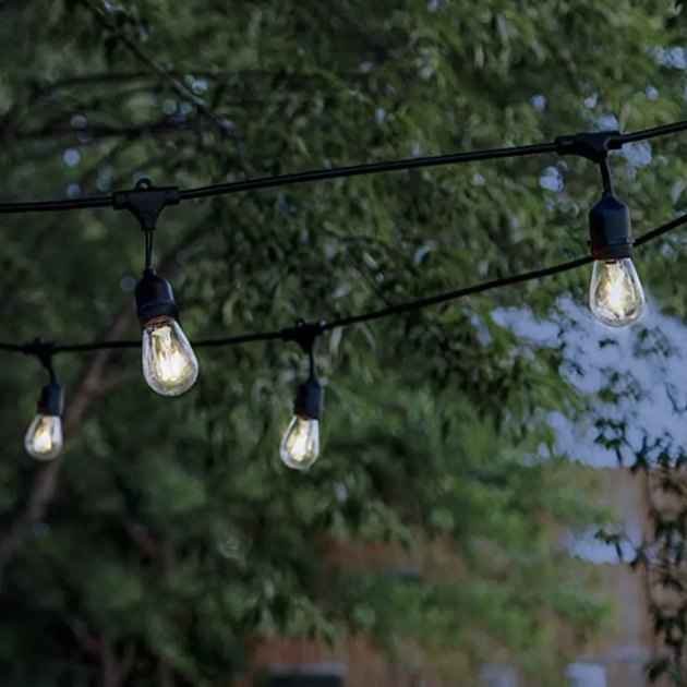 27 feet in length, these simple and elegant string lights are powered by a battery charged in direct or indirect sunlight. The bulbs shine up to six hours on a full charge.