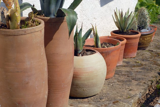 Materials That Can Be Used for Drainage of Potted Plants