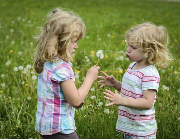 girls blowing a dandelion