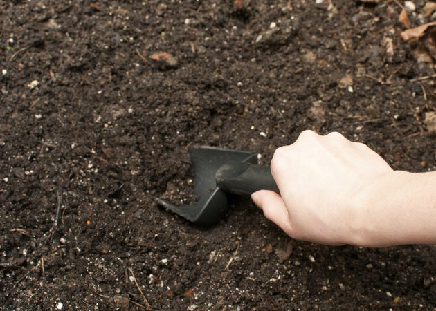 Digging soil with black gardening tool