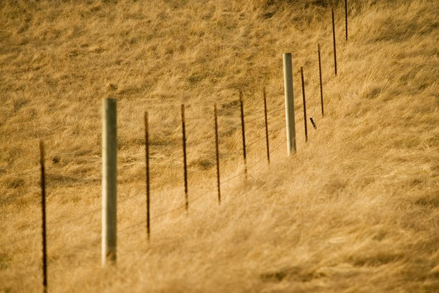 High angle view of a fence in a field, Los Angeles, California, USA